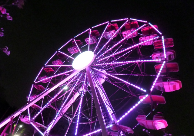 roda-gigante-pela-vida-outubro-rosa-2